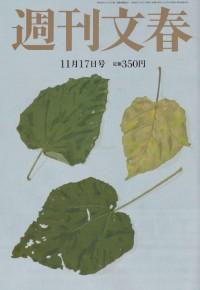 滋賀のライフスタイルカイロプラクティック(整体ではない)週刊文春特集003