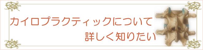 滋賀の整体カイロプラクティック「カイロプラクティックについて詳しく知りたい!」