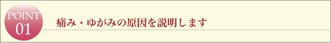 滋賀県草津市の整体ライフスタイルカイロプラクティック・痛み・ゆがみの原因を説明します