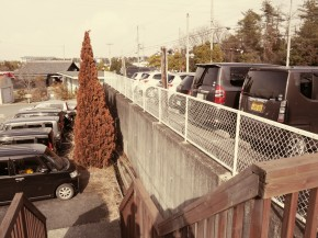 ライフスタイルカイロプラクティック新しい駐車場その2